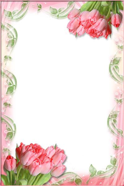 Рамки для поздравлений тюльпаны