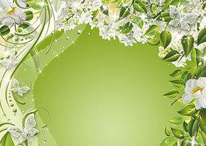 Зеленый фон для поздравления 13