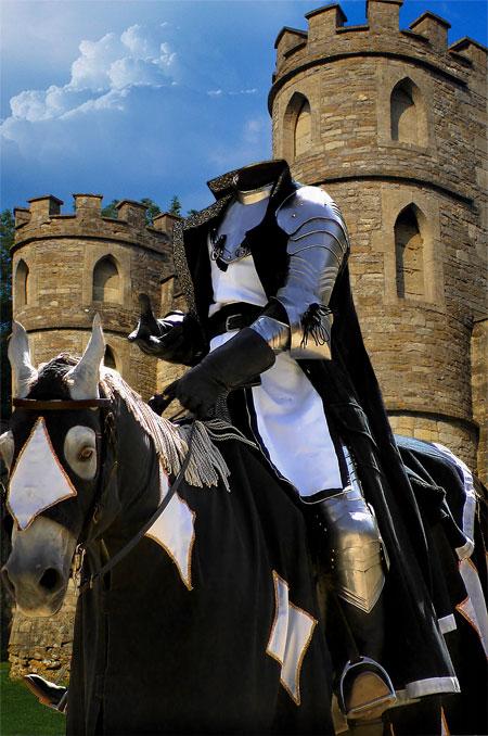 Рыцари нашего королевства