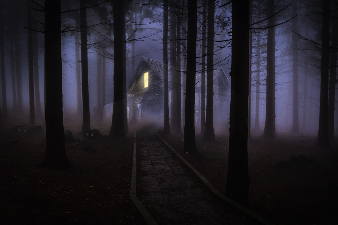 the horrible things in the deep forest Somewhere deep in the woods of northern germany lies a very strange place with these friends made a terrifying discovery beneath the ground while walking.