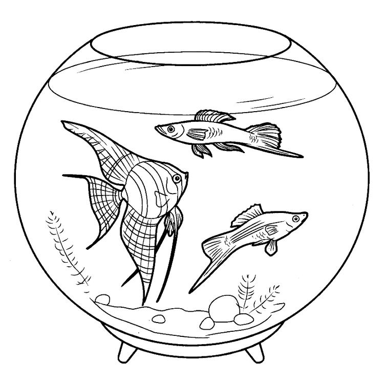 Раскраски рыбка на аквариуме