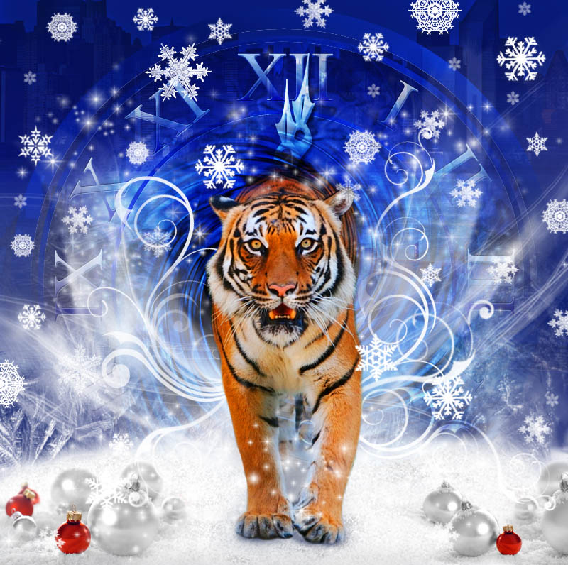 Про, открытки к году тигру