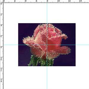 http://www.photoshop-master.ru/lessons/2007/170907/animated_back/animatee.jpg