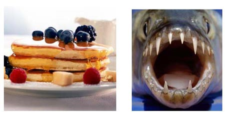 Голодный бутерброд, страшный бутерброд в фотошопе, уроки фотошоп