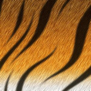 http://photoshop-master.ru/lessons/2008/190708/tigr/7.JPG