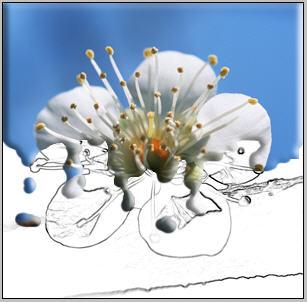 http://www.photoshop-master.ru/lessons/2008/300408/15.jpg
