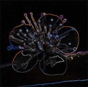 http://www.photoshop-master.ru/lessons/2008/300408/2.jpg