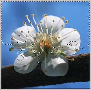 http://www.photoshop-master.ru/lessons/2008/300408/7.jpg