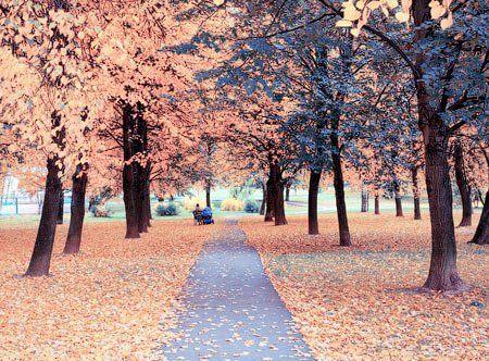 http://www.photoshop-master.ru/lessons/les1026/4.jpg