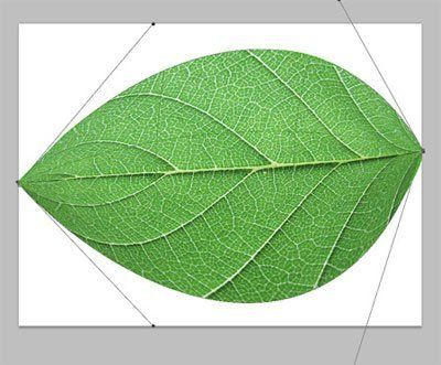 http://www.photoshop-master.ru/lessons/les1508/03.jpg
